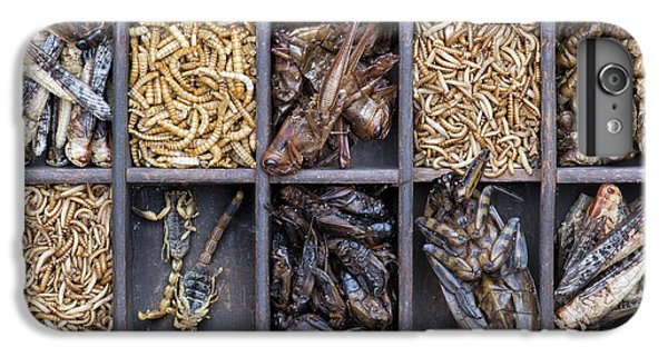 Edible Insects IPhone 7 Plus Case by Tim Gainey