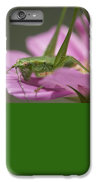 Flower Hopper IPhone 7 Plus Case by Michael Eingle