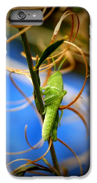 Grassy Hopper IPhone 7 Plus Case by Chris Brannen