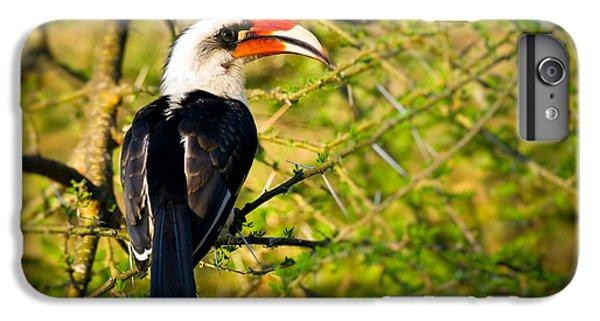 Male Von Der Decken's Hornbill IPhone 7 Plus Case by Adam Romanowicz