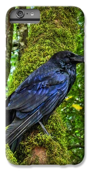 Muir Woods Raven 001 IPhone 7 Plus Case by Lance Vaughn