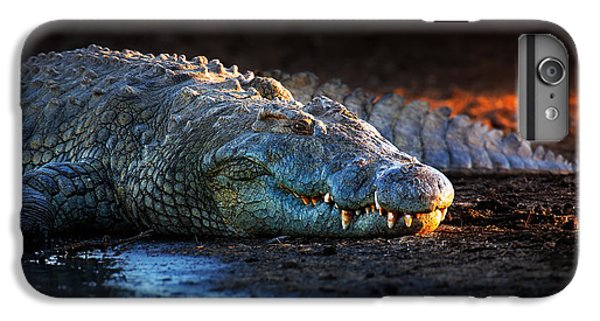 Nile Crocodile On Riverbank-1 IPhone 7 Plus Case by Johan Swanepoel