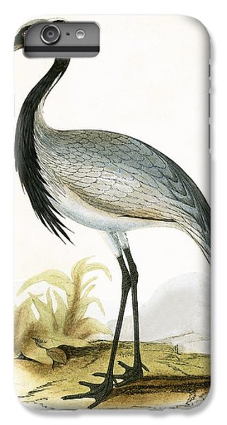 Numidian Crane IPhone 7 Plus Case by English School