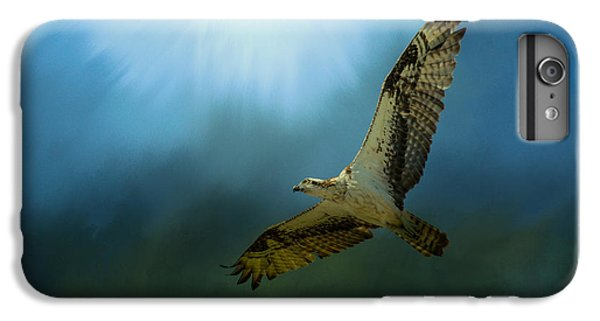 Osprey In The Evening Light IPhone 7 Plus Case by Jai Johnson