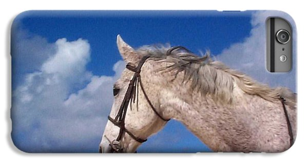 Pancho IPhone 7 Plus Case by Mary-Lee Sanders