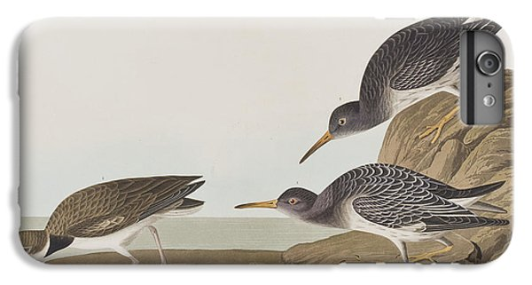 Purple Sandpiper IPhone 7 Plus Case by John James Audubon