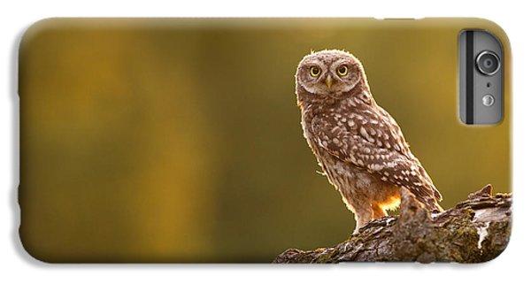 Qui, Moi? Little Owlet In Warm Light IPhone 7 Plus Case by Roeselien Raimond