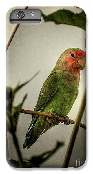 The Lovebird  IPhone 7 Plus Case by Saija  Lehtonen