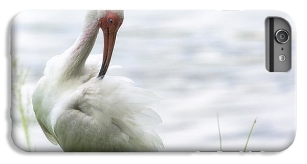 The White Ibis  IPhone 7 Plus Case by Saija  Lehtonen