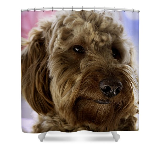 A Doodle Face Shower Curtain by Madeline Ellis