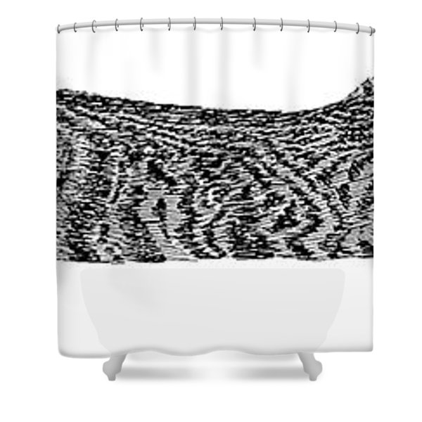 Manx Cat Sleeping Shower Curtain by Jack Pumphrey
