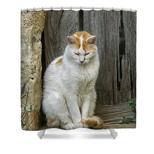 080801p076 Shower Curtain by Arterra Picture Library