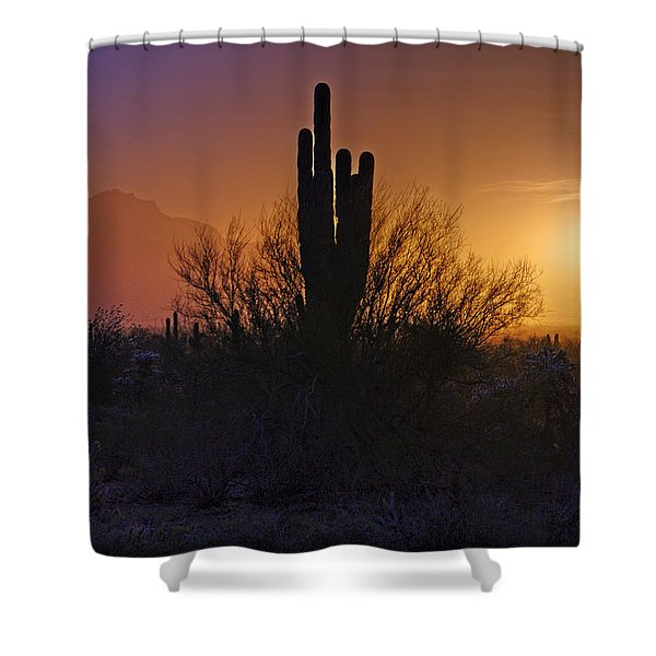 A Sonoran Morning  Shower Curtain by Saija  Lehtonen