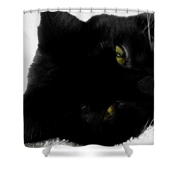Beethoven Shower Curtain by Cheryl Young