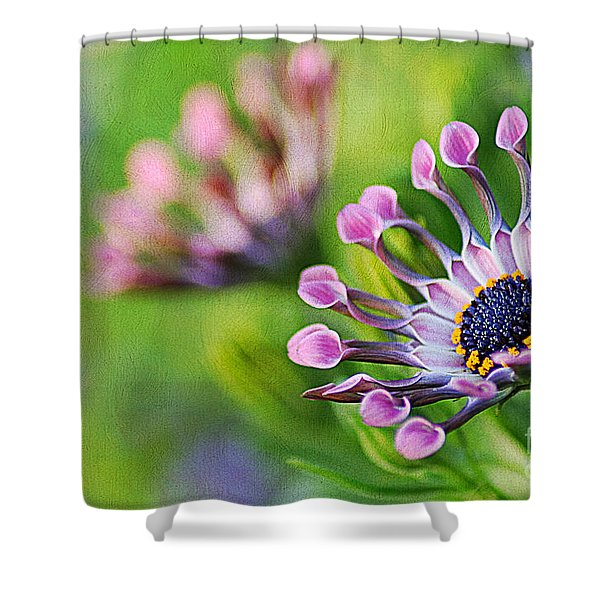 Colors Of Spring Shower Curtain by Darren Fisher