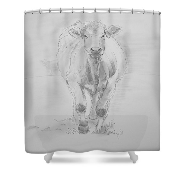 Cow Drawing Shower Curtain by Mike Jory