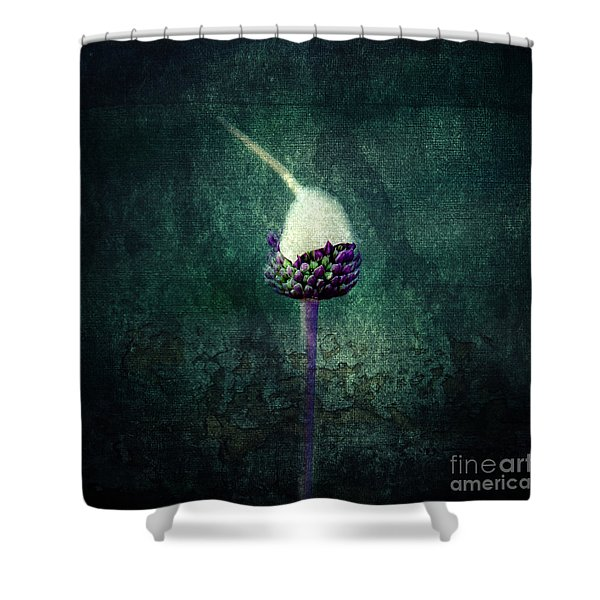 Delicate Shower Curtain by Stylianos Kleanthous