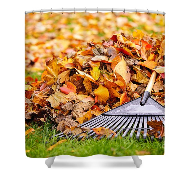 Fall leaves with rake Shower Curtain by Elena Elisseeva