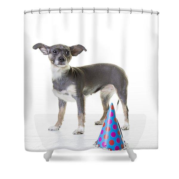 Happy Birthday Shower Curtain by Edward Fielding