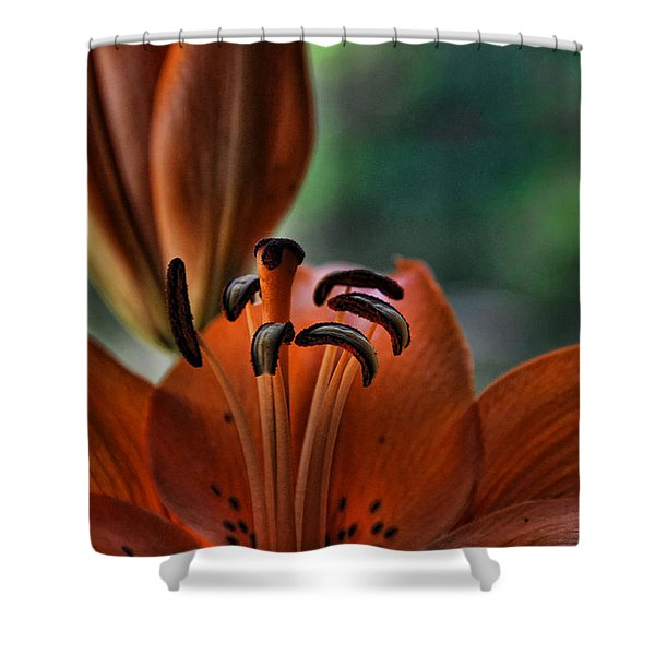 Orange Lilly Shower Curtain by Saija  Lehtonen
