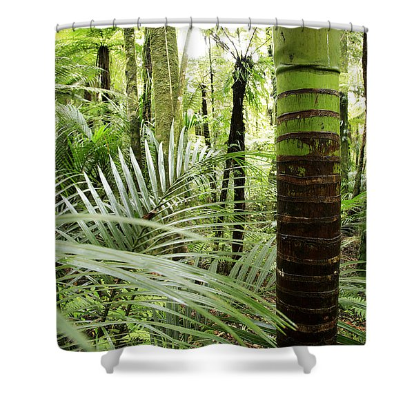 Rainforest  Shower Curtain by Les Cunliffe