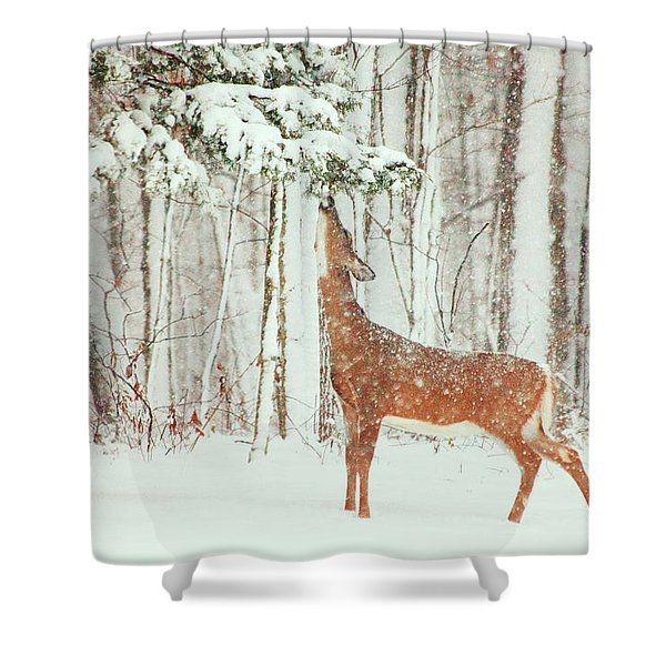 Reach For It Shower Curtain by Karol  Livote