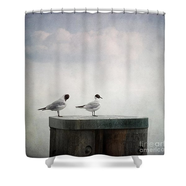 Seagulls Shower Curtain by Priska Wettstein