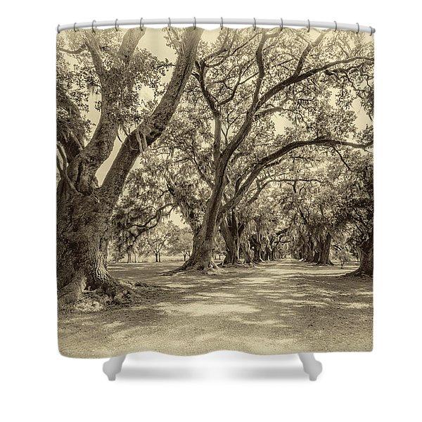 The Lane Sepia Shower Curtain by Steve Harrington