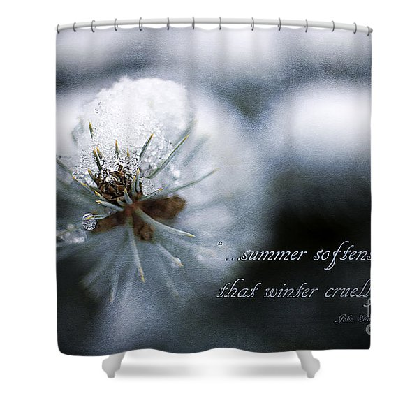 Winter Shower Curtain by Darren Fisher