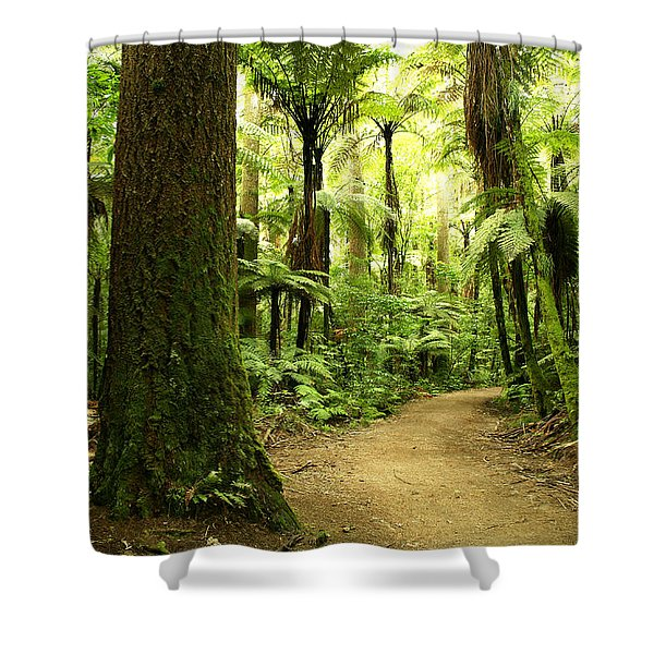 Forest Shower Curtain by Les Cunliffe