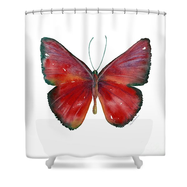 16 Mesene Rubella Butterfly Shower Curtain by Amy Kirkpatrick