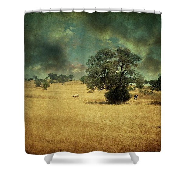 1997 Shower Curtain by Taylan Soyturk
