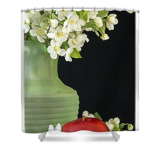 Apples Shower Curtain by Edward Fielding
