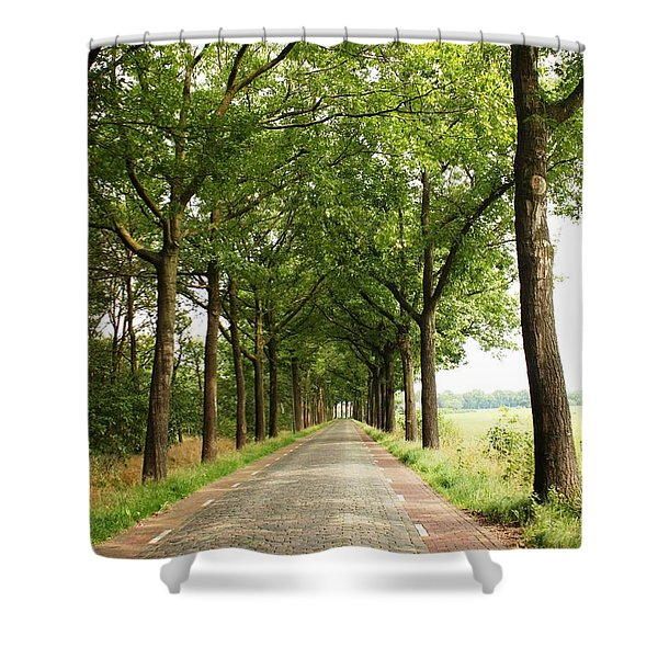 Cobblestone Country Road Shower Curtain by Carol Groenen