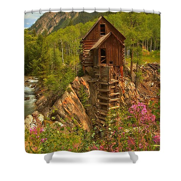 Crystal Mill Wildflowers Shower Curtain by Adam Jewell