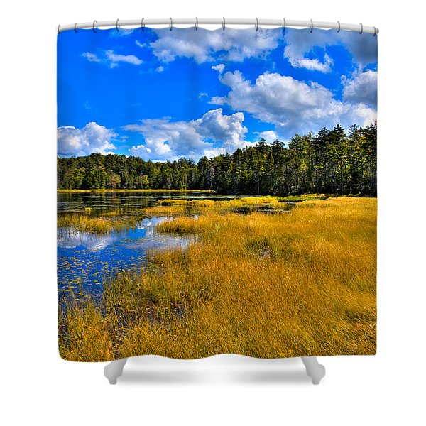 Fly Pond in the Adirondacks Shower Curtain by David Patterson