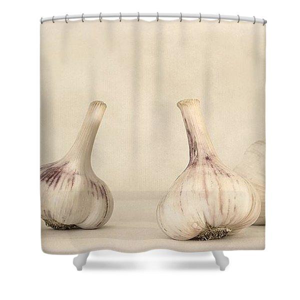 fresh garlic Shower Curtain by Priska Wettstein
