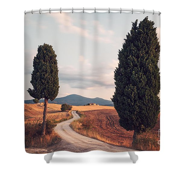 Rural Road With Cypress Tree In Tuscany Italy Shower Curtain by Matteo Colombo