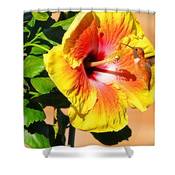 Sunny And Bright Shower Curtain by Lynn Bauer