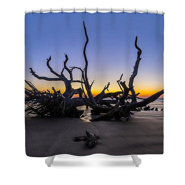The Reach Shower Curtain by Debra and Dave Vanderlaan