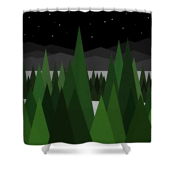 Winter Night Shower Curtain by Val Arie