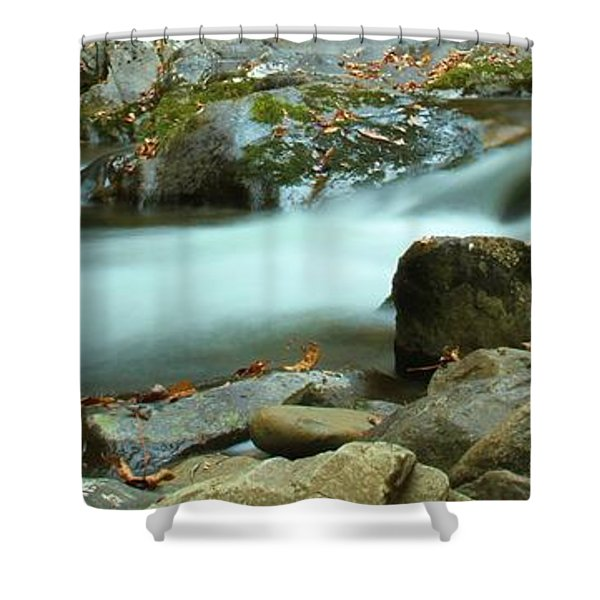 Flow Shower Curtain by Dan Sproul