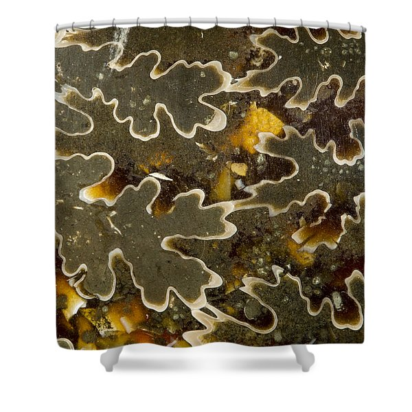 Rock Star Shower Curtain by Jean Noren
