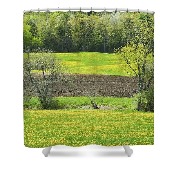 Spring Farm Landscape With Dandelion bloom in Maine Shower Curtain by Keith Webber Jr