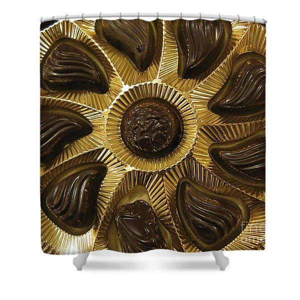 A Chocolate Sun Shower Curtain by Ausra Paulauskaite