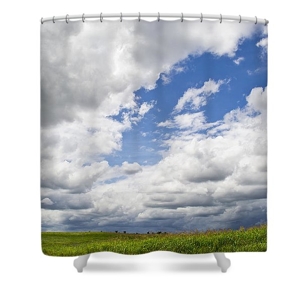 A Cloudy Day Shower Curtain by Lisa Plymell