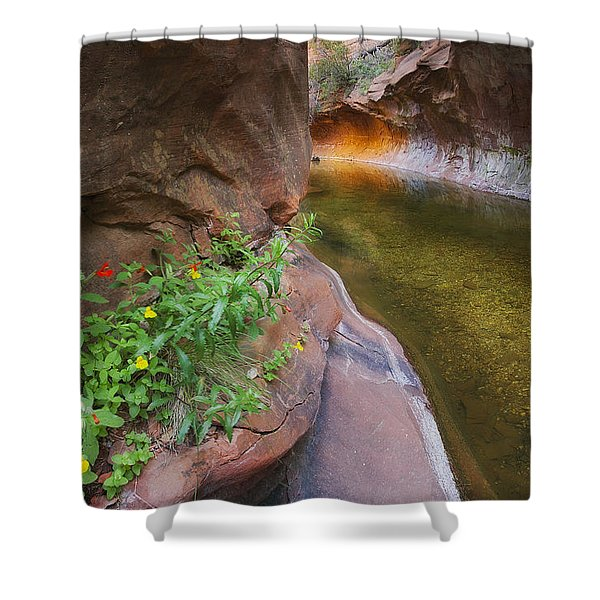 A Frogs Rest Shower Curtain by Peter Coskun