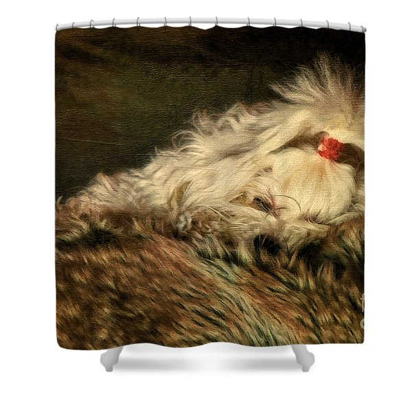 A Long Winter's Nap Shower Curtain by Lois Bryan