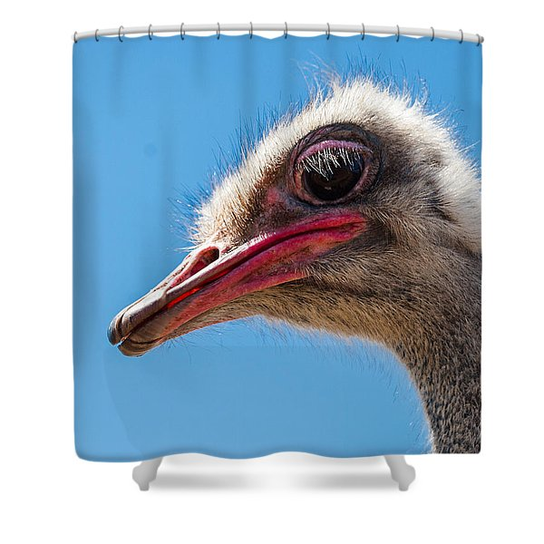 A Mug Only A Mother Could Love. Shower Curtain by Jean Noren