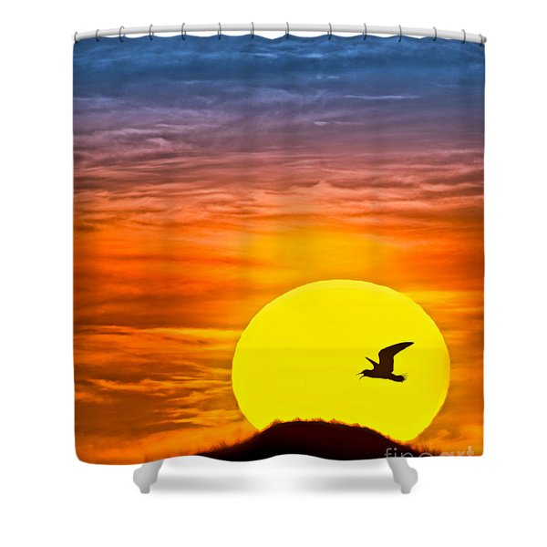 A New Day Shower Curtain by Susan Candelario